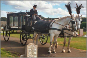 funeral_transport2