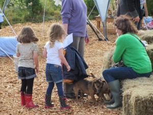 Kids n dogs