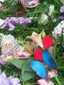 Jacq-MemorialButterflies